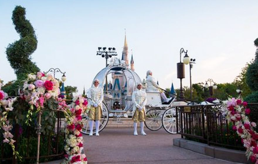Walt Disney World Based In Orlando Florida Has Announced That It Begun Offering Special Wedding Packages With All Of